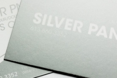 outsource-print-business-cards-silver-pms